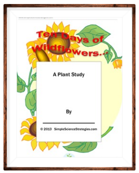 https://www.teacherspayteachers.com/Product/Ten-Days-of-Wildflowers-901568 http://allkidscanlearn.school.blog